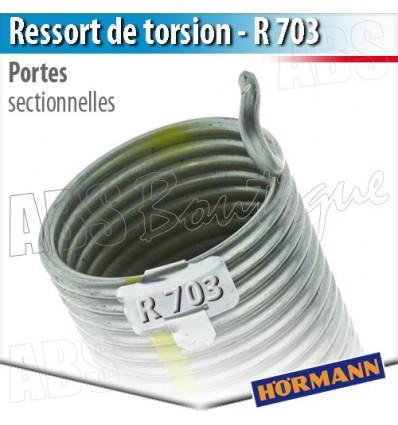 Ressort Porte Sectionnelle Hormann R 703