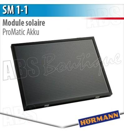 Module Solaire Sm  Pour Moteur De Portes De Garage Promatic Akku